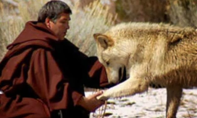 LOVE CAME DOWN AT CHRISTMASTIME. dAY 19.  sT FRANCIS AND THE WOLF