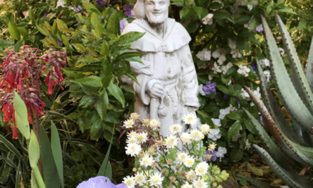 LOVE CAME DOWN AT CHRISTMASTIME day 21.   tHE fRANCISCAN wAY
